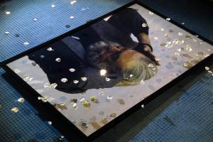 نمایشگاه عکسهای پرویز مشکاتیان افتتاح شد