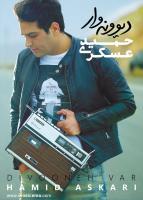 کاور آلبوم «دیوونه وار» حمید عسکری