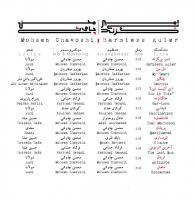 پوستر آلبوم «امیر بی گزند» با صدای «محسن چاوشی»