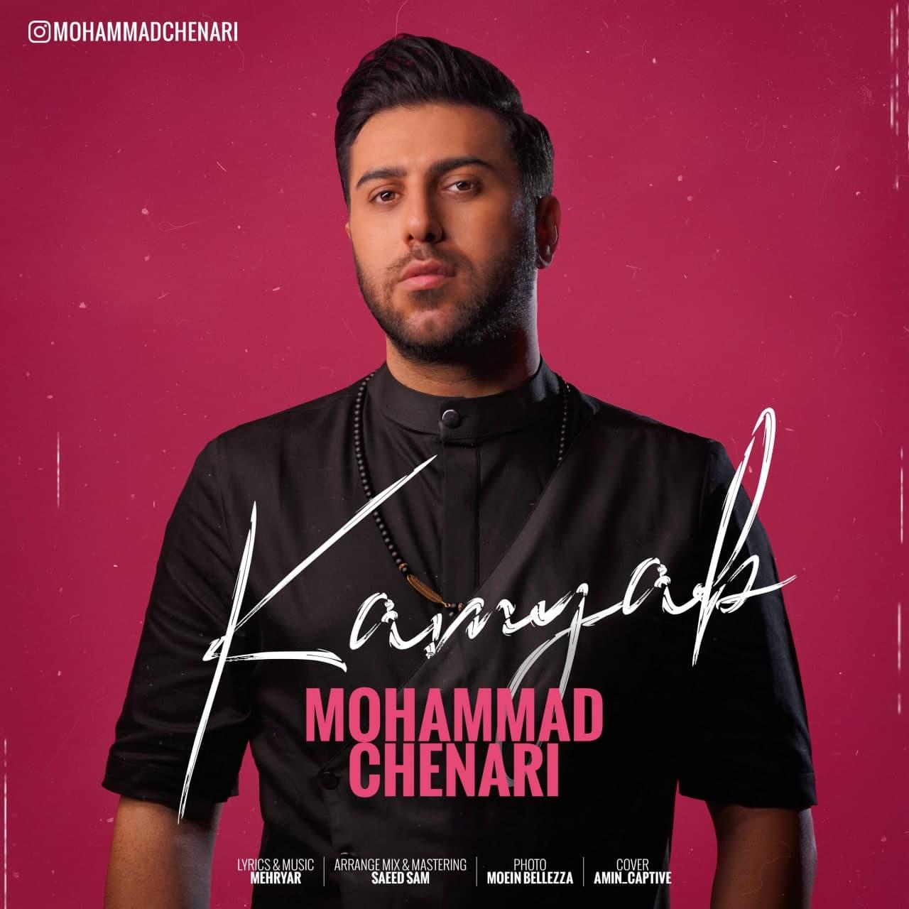 Mohammad Chenari - Kamyab